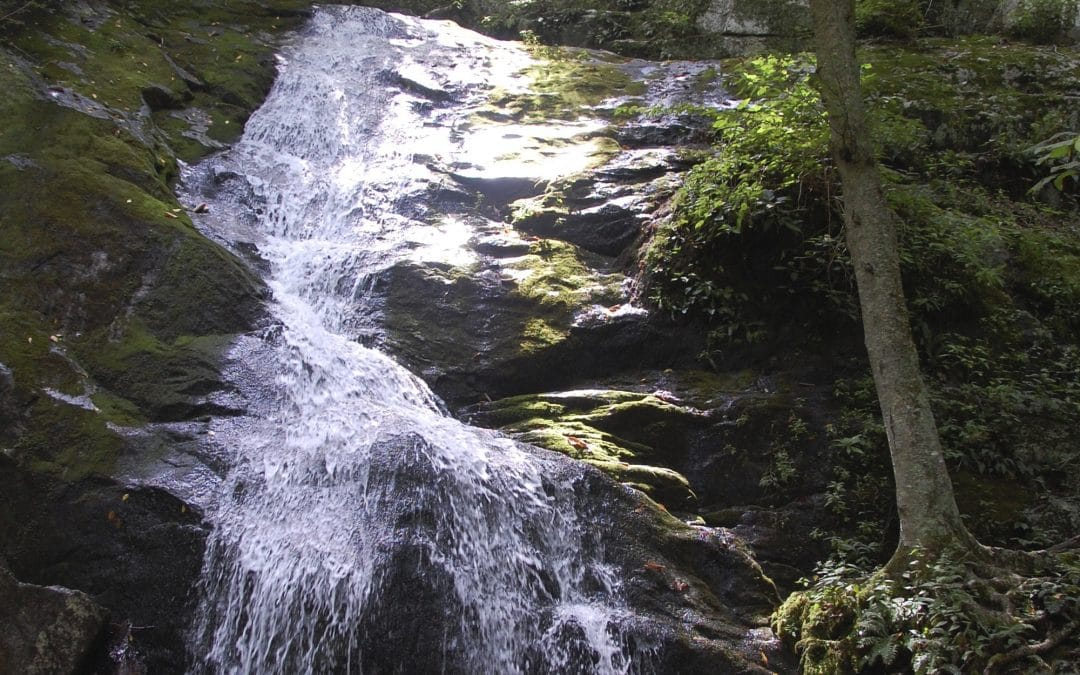 Do You Have a Daily Ritual?